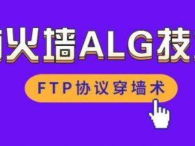 防火墙ALG技术之FTP协议穿墙术