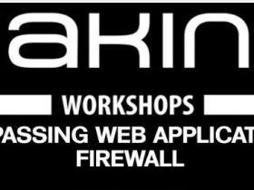 bypassing web application firewall | 简介WAF,WAF 绕过和技术(一)