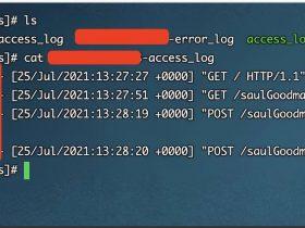 【防溯源】如何优雅的隐藏你连接 Webshell 的真实 IP