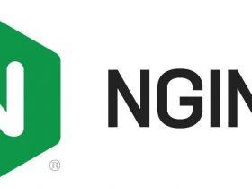 Nginx文件名逻辑漏洞(CVE-2013-4547)