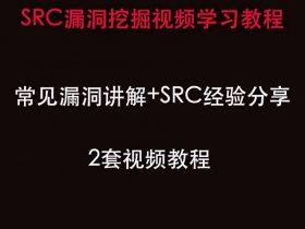 web渗透之SRC漏洞挖掘视频教程
