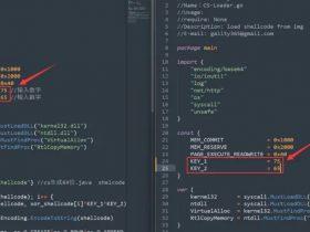 干货|使用Go语言在图片中隐藏Shellcode