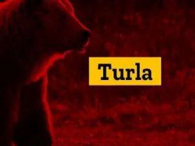 Turla APT组织使用新后门攻击阿富汗、德国和美国